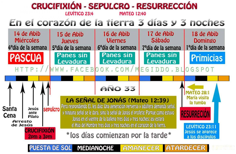 Ronald megiddo 2 adn y la biblia adn y la biblia urtaz Image collections